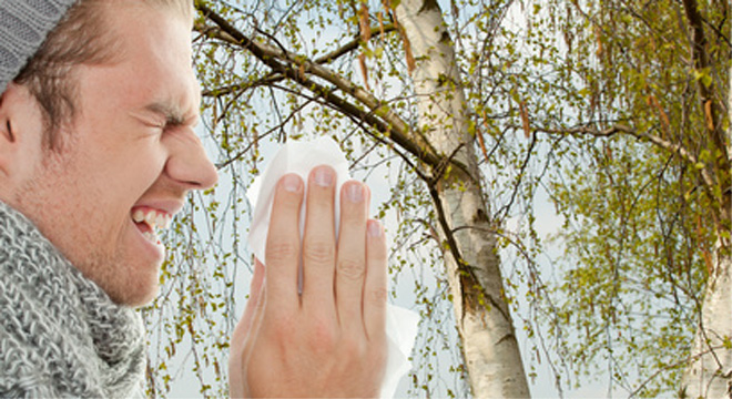 Heuschnupfen: Eine Allergie auf Pollen mit allergischem Schnupfen